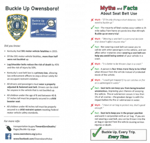 Seat Belt Informational Flyer